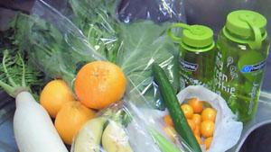 120219野菜たち.jpg