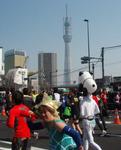 2011東京マラソン&スカイツリー.jpg